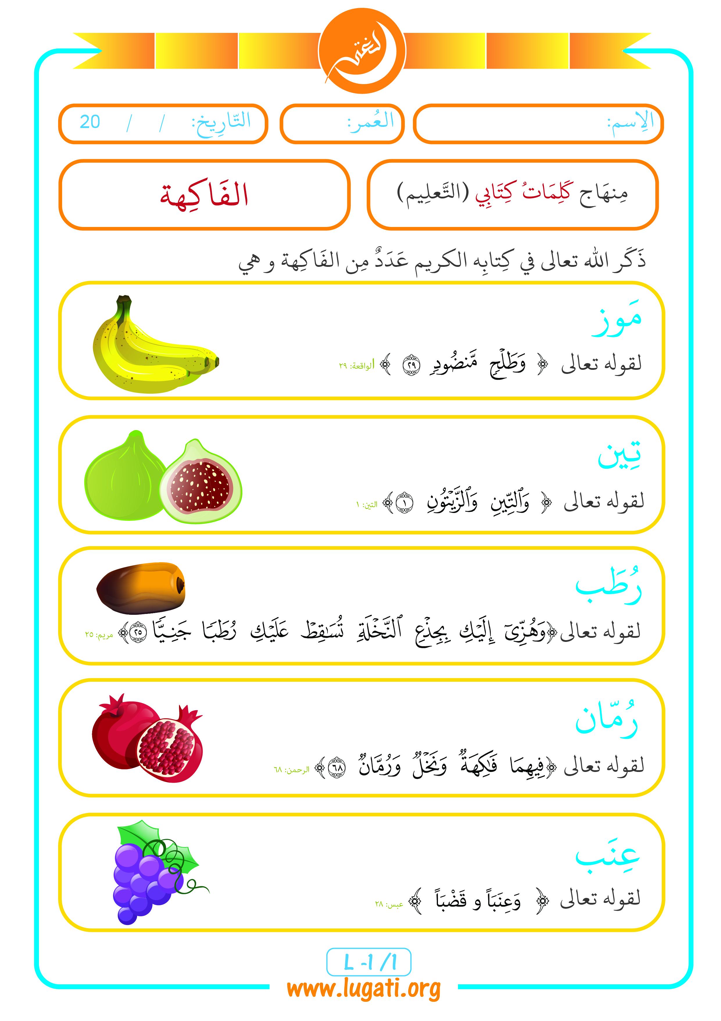 Fruit L1